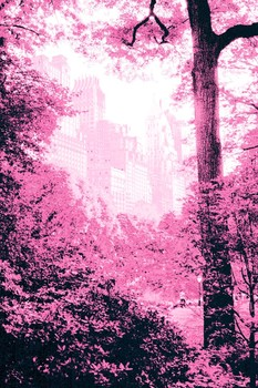 20150516105246-new_york_-_fairytale_forest_-_pink_by_k