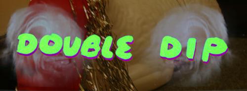 20140122174056-doubledip_banner