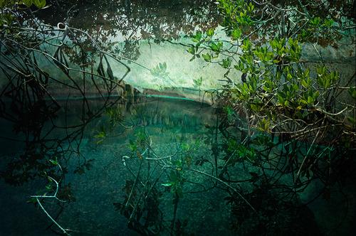 20140131201035-water-mural15x15_copy