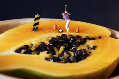 20140202202025-6_papaya_trap