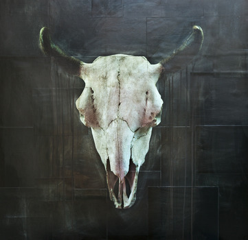 20140203201549-buffaloskull_40_x_40