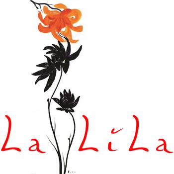 20140212153027-2012_08_lalila_logo_facebook_360