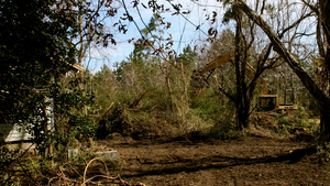 20140211002800-cobb_uprooted_slide_2