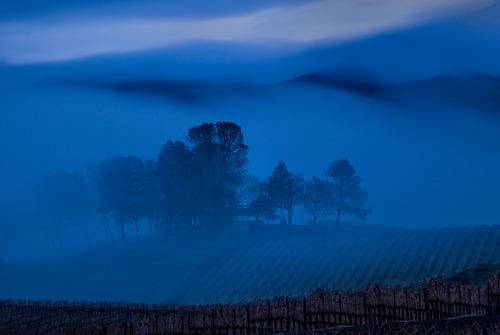 20140218064611-vigilence_fog