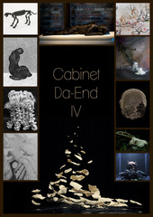 20140221175005-cabinet04-web