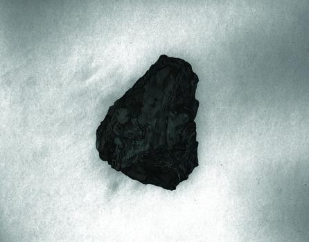 20140226102418-carboniferous1of2