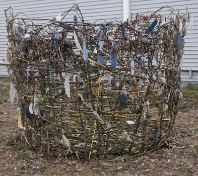 20140226222829-point_reyes_nest__for_the_birds__project