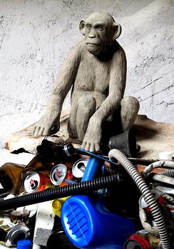 20140304140558-scimmia_3