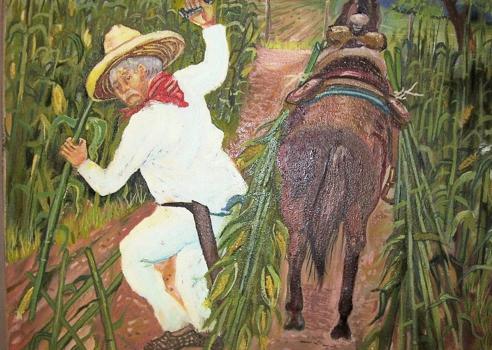 Mexico_s_harvest