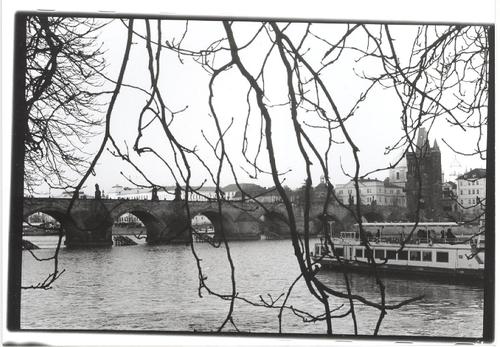 20140312050451-charles_bridge_behind_a_tree