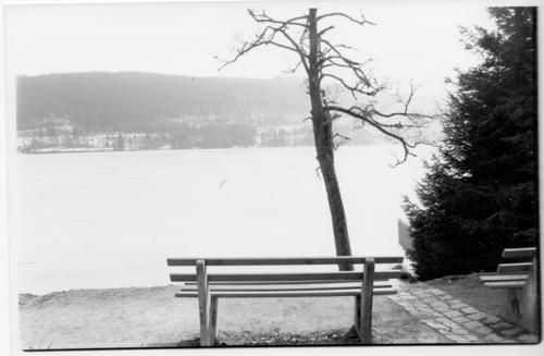 20140312050516-titisee_bench