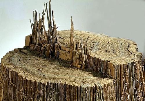 20140312071418-karen_rudd__stump_crop