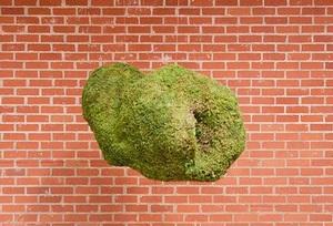 20140327172937-miri_chais__augmented_garden_-_cloud_detail