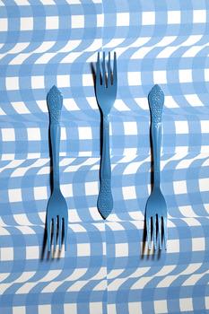 20140402154612-blue_forks_web