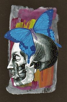 20140411023747-butterfly