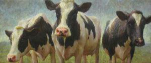 20140412074318-3-koeien-mokum-kopie-kopie-w1000