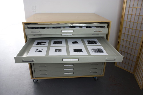 20140413212106-cabinet_installation_foliage_photograms_