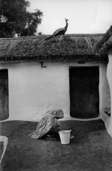 20140416040751-jb08ri33_-_rural_courtyard__banasthali__rajasthan__1972