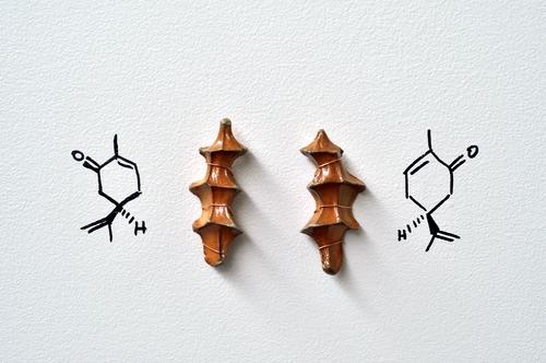 20140416184214-enantiomers