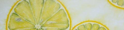 20140421204355-laura_gompertz_three_lemon_slices