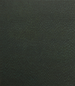 20140421223951-rain-0006_-_raitt__evergreen__2__oil_on_canvas__240_x_210_cm__2013__cat