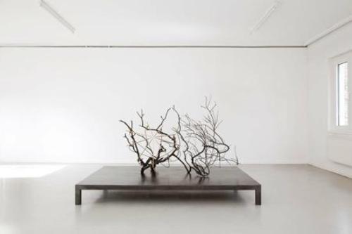 20140425033542-rh_sc_2050_revelation_of_a_tree_20140