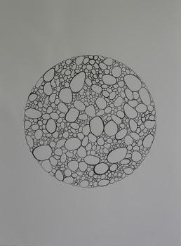 20140428014413-blastosys_1