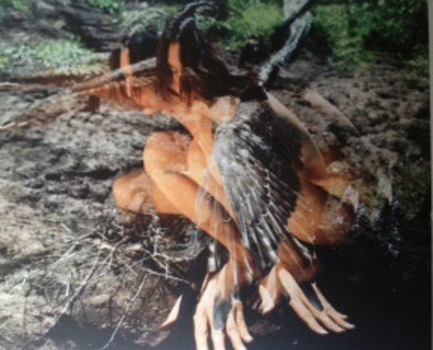 20140428205916-osprey