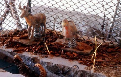Playground-animals