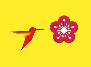 20140506151029-dpflumm-kolibri-500