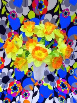 20140507155545-flowers-daffodils-1