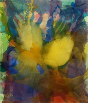 20140509184653-yellowgreentangerine_2014_5_x4_feet