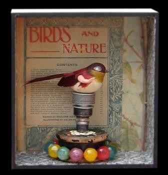 20140514175351-birdie