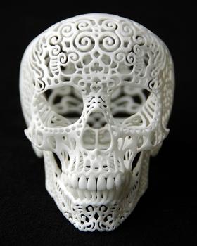 20140602234742-crania_anatomica_filigre