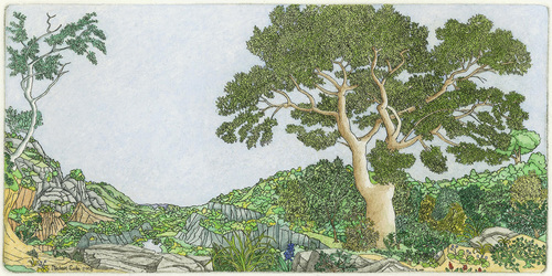 20140605192538-eade_vista_handwatercolored_etching