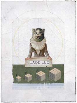 20140701030652-cornell-labeille_v2