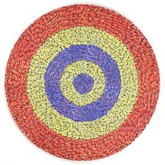 Full_circle_moving_target__2009_lores1_fox