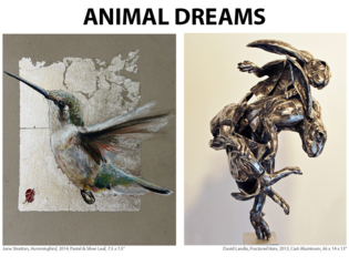 20140712034509-animaldreams_newsletterflyer