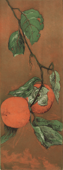 20140717202357-two_persimmon_300dpi