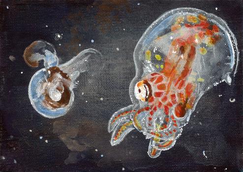 20140718201609-kbentonpteropod_octopus