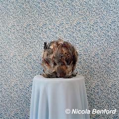 20140721142754-nicola_benford_380