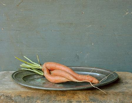 Carrots-14x18-_1200