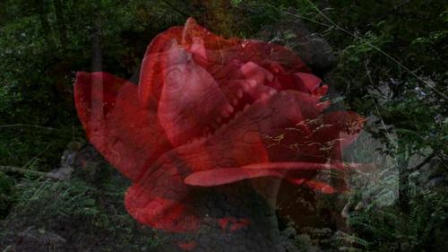 20140723113305-monsters_film_still_1
