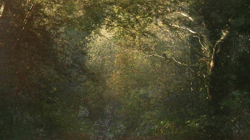 20140723113630-the_secluded_grove_film_still_3
