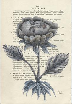 20140724200920-donnaabbate_a_spoken_flower_page_10