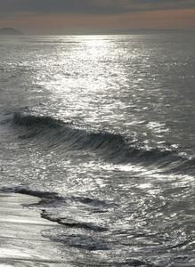 20140729181931-silver_tide