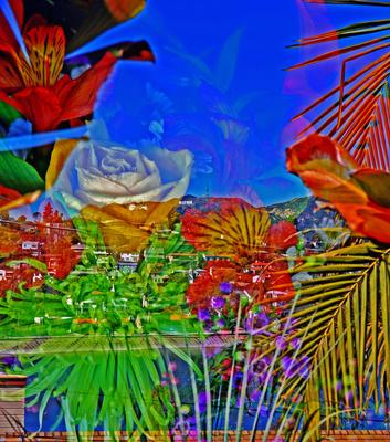 20140804211543-johnnny_nicoloro_bday_flowers_from_bbk_no