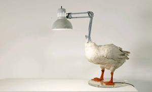 20140806072448-duck_lamp_658x400