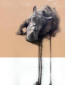20140815005650-rhino_tonydimauro
