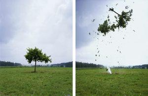 20140818021758-raketenbaum_rocket_tree